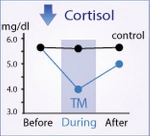 cortisol